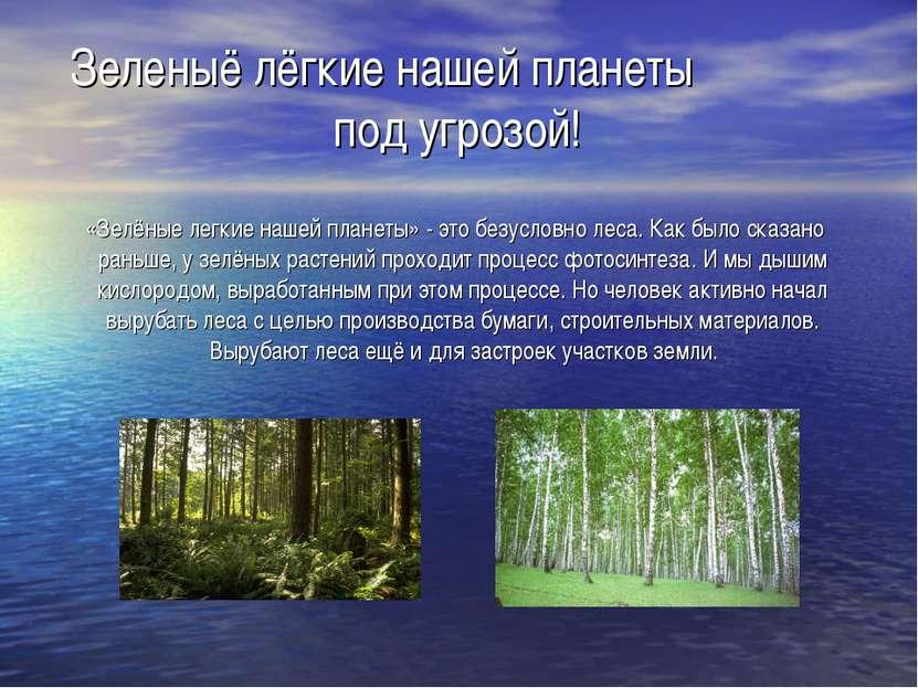 Зеленыё лёгкие нашей планеты под угрозой! «Зелёные легкие нашей планеты» - эт...