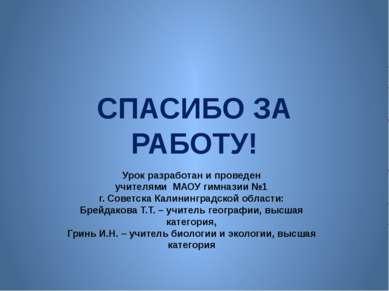 СПАСИБО ЗА РАБОТУ! Урок разработан и проведен учителями МАОУ гимназии №1 г. С...