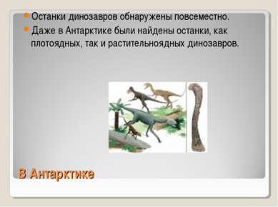 В Антарктике Останки динозавров обнаружены повсеместно. Даже в Антарктике был...