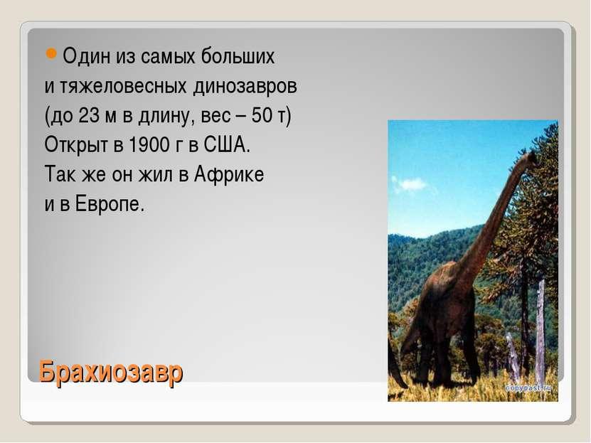 Брахиозавр Один из самых больших и тяжеловесных динозавров (до 23 м в длину, ...