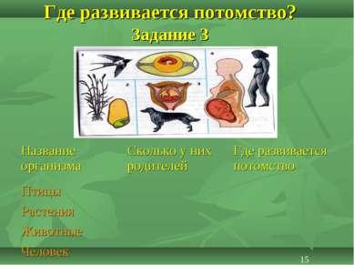 Где развивается потомство? Задание 3 15 Название организма Сколько у них роди...