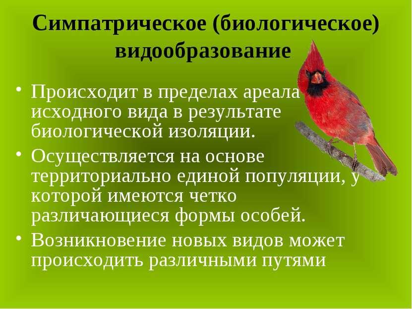 Симпатрическое (биологическое) видообразование Происходит в пределах ареала и...