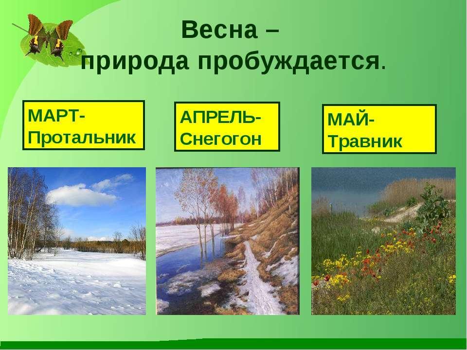 Весна – природа пробуждается. МАРТ- Протальник АПРЕЛЬ- Снегогон МАЙ- Травник