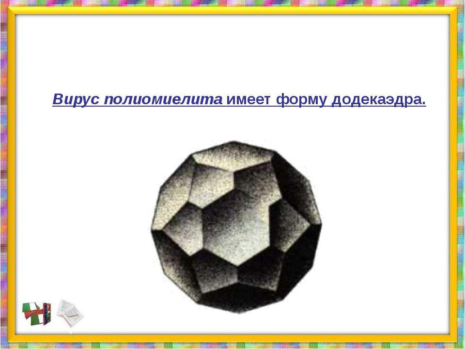 Вирус полиомиелита имеет форму додекаэдра.