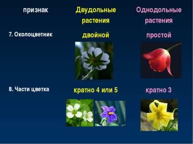 признак Двудольные растения Однодольные растения 7. Околоцветник двойной прос...
