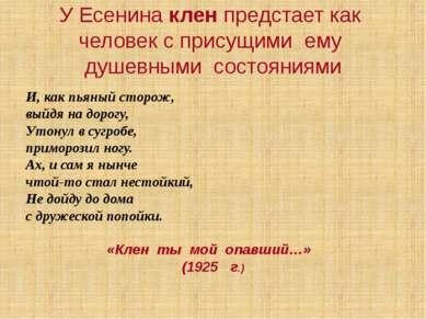 У Есенина клен предстает как человек с присущими ему душевными состояниями И,...