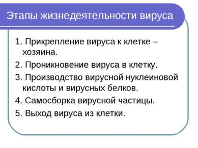 Этапы жизнедеятельности вируса 1. Прикрепление вируса к клетке –хозяина. 2. П...