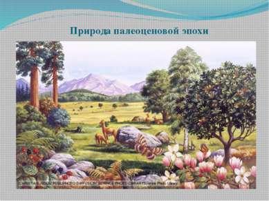 Природа палеоценовой эпохи