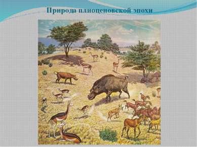 Природа плиоценовской эпохи