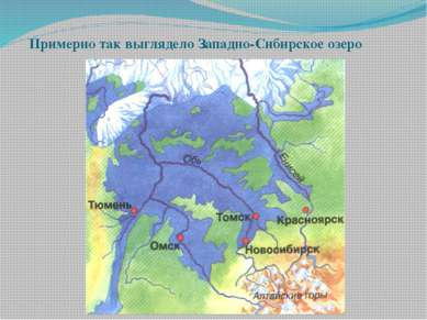 Примерно так выглядело Западно-Сибирское озеро