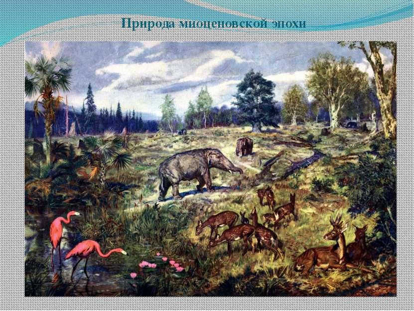 Природа миоценовской эпохи