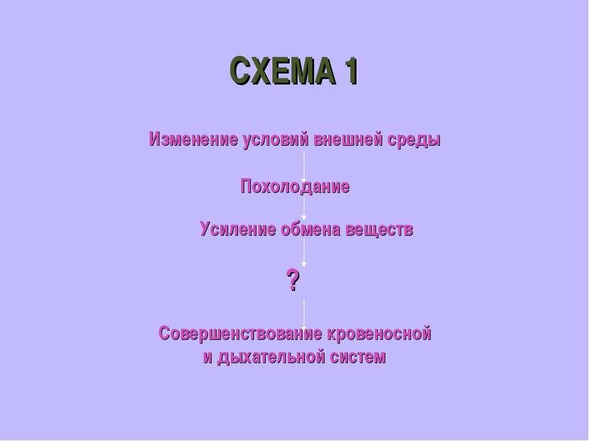 СХЕМА 1 Изменение условий внешней среды Похолодание Усиление обмена веществ ?...