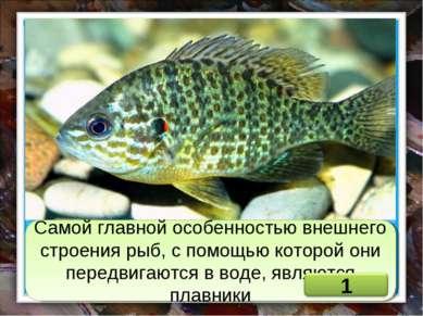Самой главной особенностью внешнего строения рыб, с помощью которой они перед...