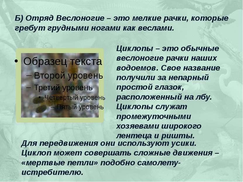 Б) Отряд Веслоногие – это мелкие рачки, которые гребут грудными ногами как ве...