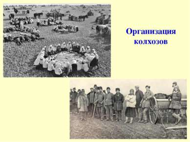 Организация колхозов