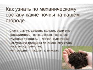 Как узнать по механическому составу какие почвы на вашем огороде. Скатать жгу...