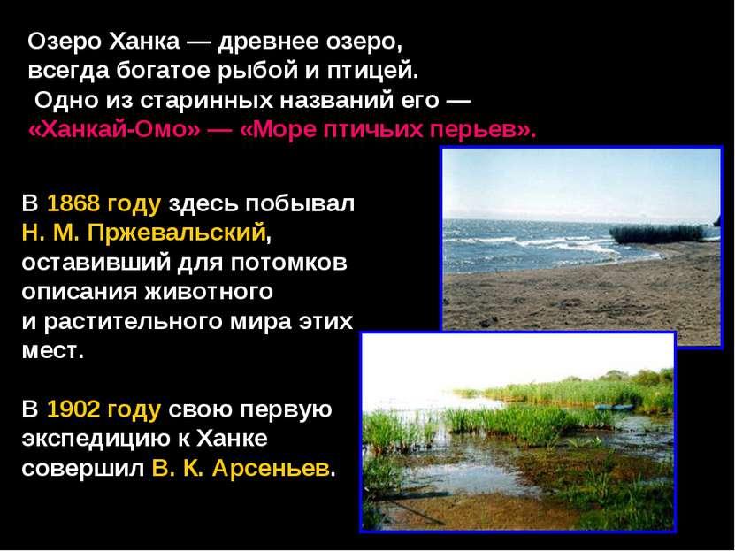 Озеро Ханка — древнее озеро, всегда богатое рыбой и птицей. Одно из старинных...