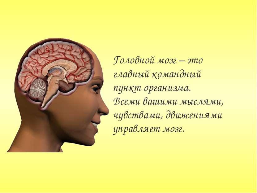 Головной мозг – это главный командный пункт организма. Всеми вашими мыслями, ...