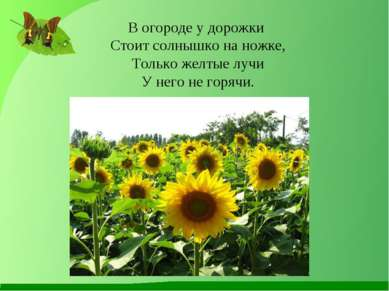 В огороде у дорожки Стоит солнышко на ножке, Только желтые лучи У него не гор...
