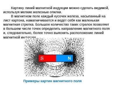 Картину линий магнитной индукции можно сделать видимой, используя мелкие желе...