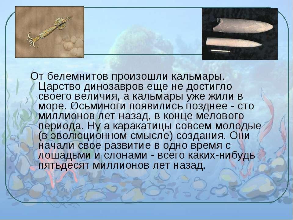 От белемнитов произошли кальмары. Царство динозавров еще не достигло своего в...