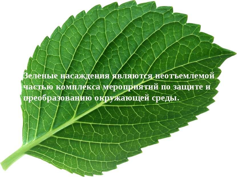Зеленые насаждения являются неотъемлемой частью комплекса мероприятий по защи...