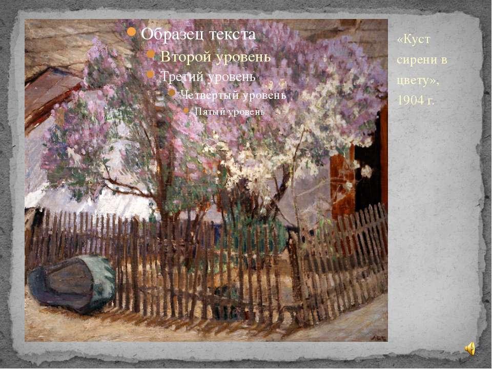 «Куст сирени в цвету», 1904 г.