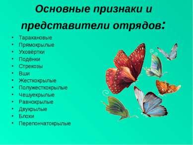 Основные признаки и представители отрядов: Таракановые Прямокрылые Уховёртки ...