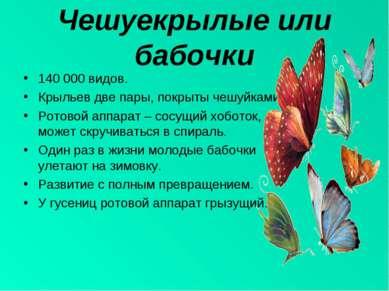 Чешуекрылые или бабочки 140 000 видов. Крыльев две пары, покрыты чешуйками. Р...