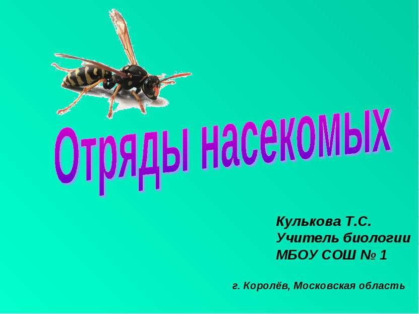 Кулькова Т.С. Учитель биологии МБОУ СОШ № 1 г. Королёв, Московская область