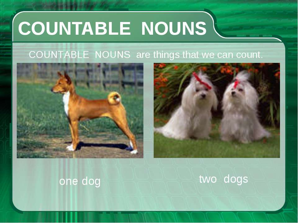 СOUNTABLE NOUNS СOUNTABLE NOUNS are things that we can count. one dog two dogs