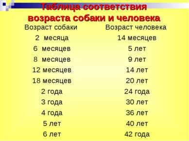 Таблица соответствия возраста собаки и человека