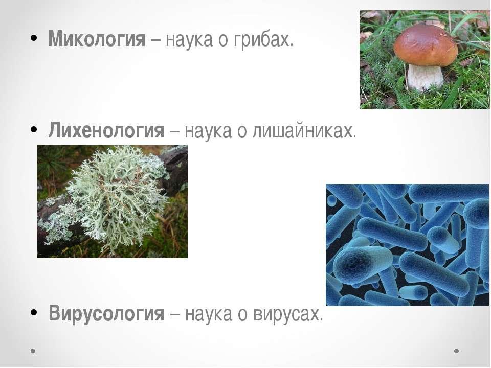 Микология – наука о грибах. Лихенология – наука о лишайниках. Вирусология – н...