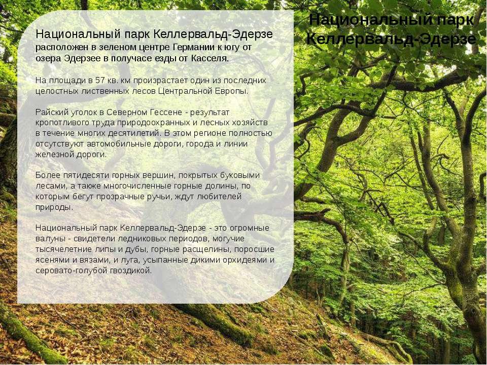 Национальный парк Келлервальд-Эдерзе расположен в зеленом центре Германии к ю...