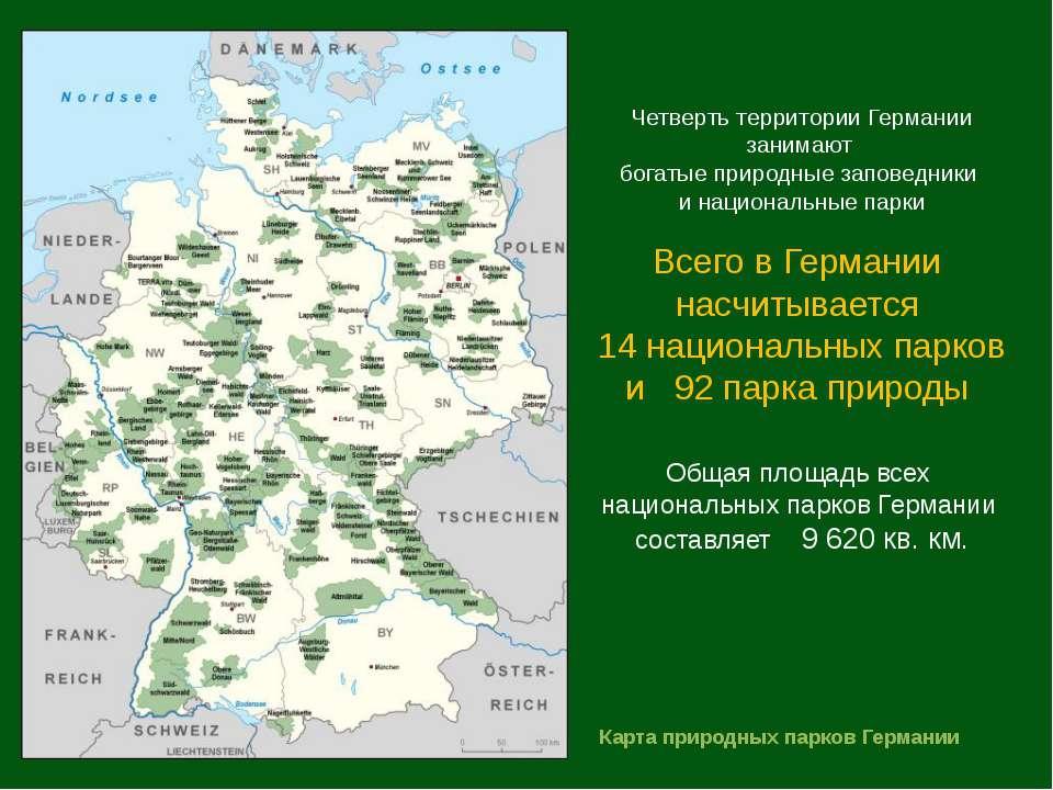 Четверть территории Германии занимают богатые природные заповедники и национа...