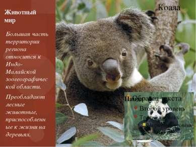Большая часть территории региона относится к Индо-Малайской зоогеографической...