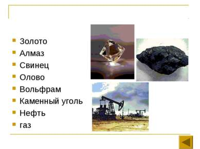 Золото Алмаз Свинец Олово Вольфрам Каменный уголь Нефть газ