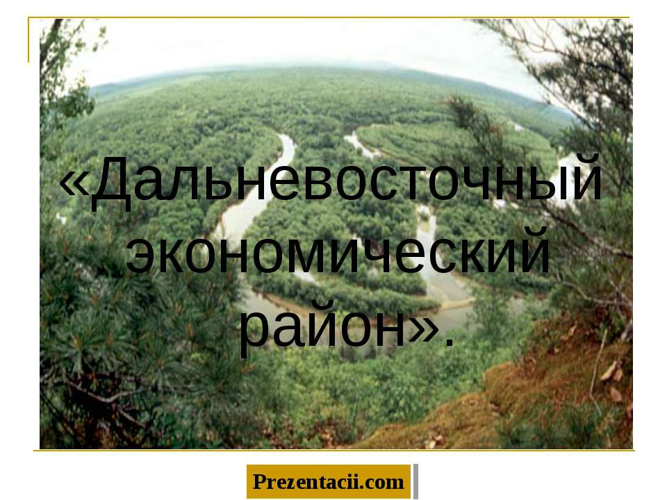 «Дальневосточный экономический район».