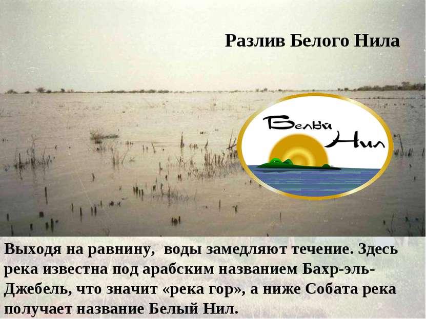 Выходя на равнину, воды замедляют течение. Здесь река известна под арабским н...