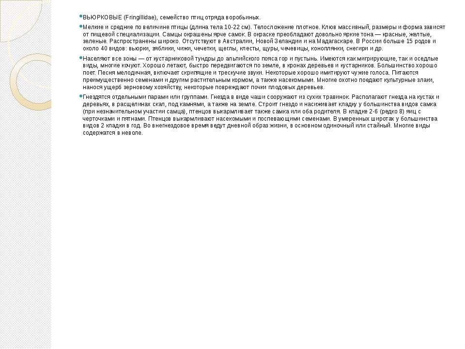 ВЬЮРКОВЫЕ (Fringillidae), семейство птиц отряда воробьиных. Мелкие и средние ...