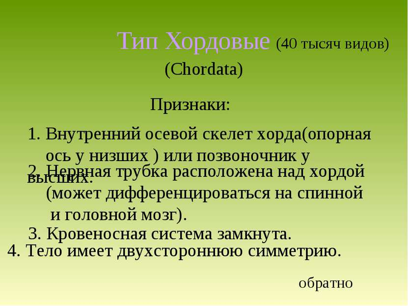 Тип Хордовые (Chordata) 4. Тело имеет двухстороннюю симметрию. (40 тысяч видо...