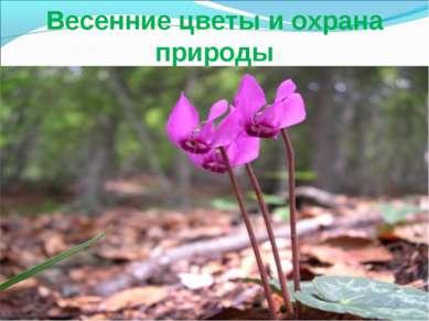 Весенние цветы и охрана природы