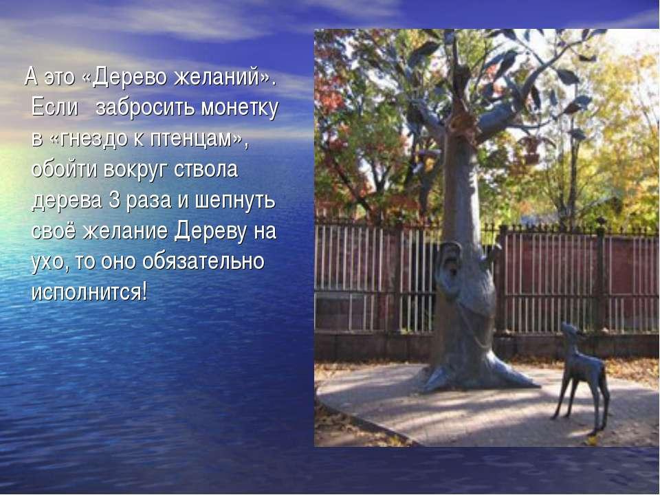А это «Дерево желаний». Если забросить монетку в «гнездо к птенцам», обойти в...