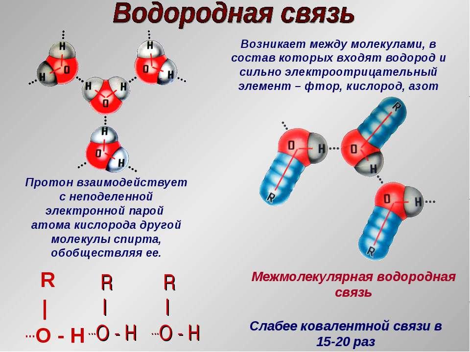 R | ...O - H R | ...O - H R | ...O - H Протон взаимодействует с неподеленной ...