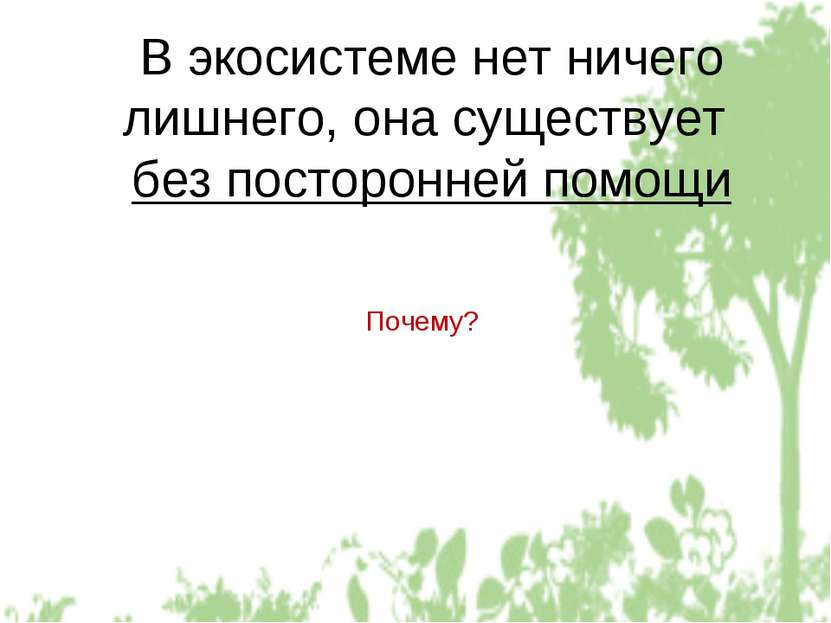 В экосистеме нет ничего лишнего, она существует без посторонней помощи Почему?