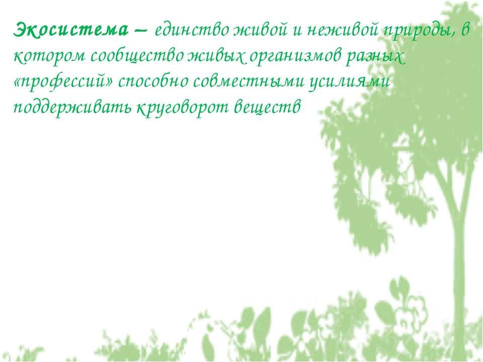 Экосистема – единство живой и неживой природы, в котором сообщество живых орг...
