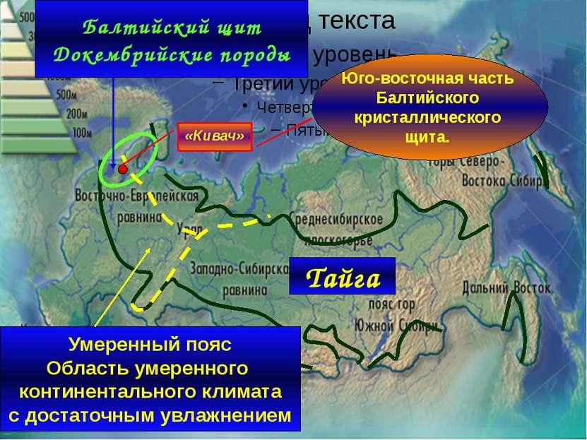 Тайга Балтийский щит Докембрийские породы Умеренный пояс Область умеренного к...