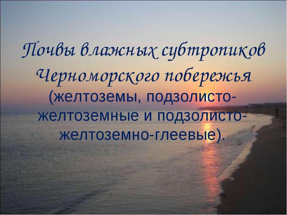 Почвы влажных субтропиков Черноморского побережья (желтоземы, подзолисто-желт...