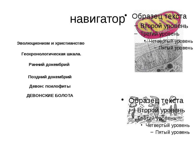 Геохронологическая шкала. принцип Стено (закон напластования): если один слой...