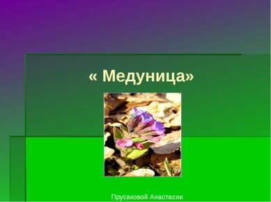 « Медуница» Прусаковой Анастасии